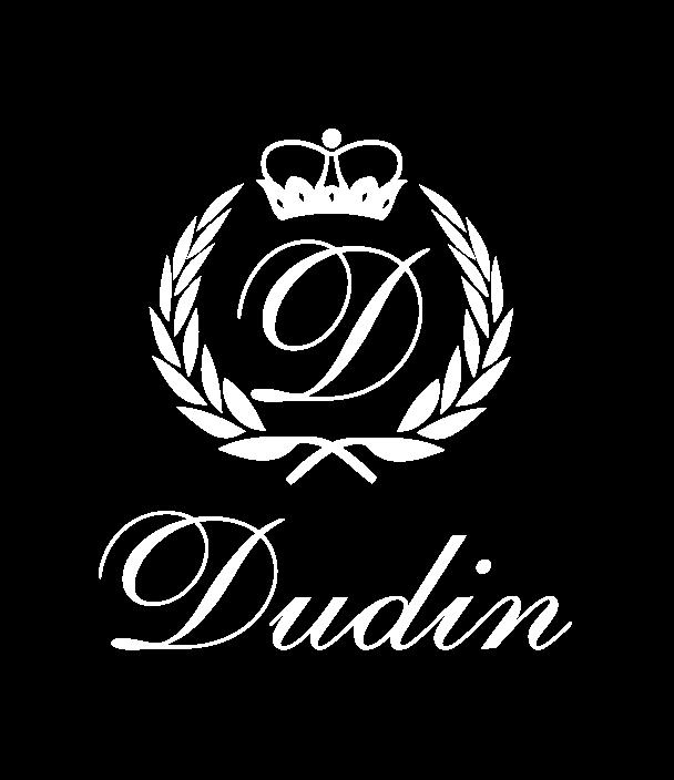 Dudin-02